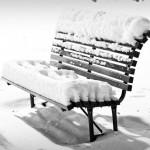 Ensam och kall